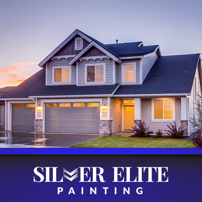 Category Painting Silver Elite Painting Carson City Nv
